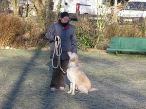 l'éducateur canin dans les landes