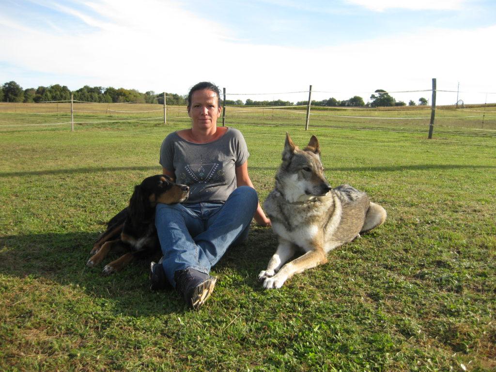coach chien et cheval
